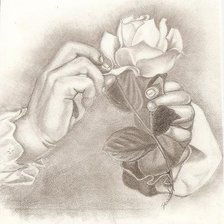 Схема вышивки «Rose_Drawing_small»
