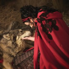 Схема вышивки «Amy Lee and Wolf»