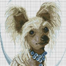 Схема вышивки «Chinese Crested»