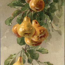 Схема вышивки «Golden Pears on a Branch»