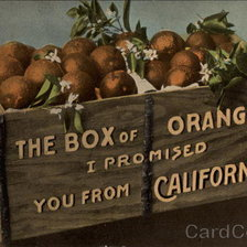 Схема вышивки «The Box of Oranges I Promised you from California»