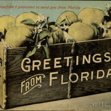 Схема вышивки «The Box of Grapefruit I promised to Send You From Florida»