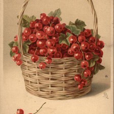 Схема вышивки «Basket of Red Currants»