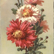 Схема вышивки «Pink & Red Flowers with Buds & Leaves»