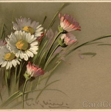 Схема вышивки «Painting of Pink, White & Yellow Daisies»