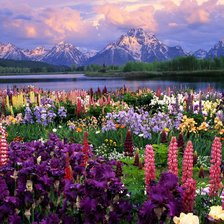 Схема вышивки «Grand Teton and Wildflowers, Wyoming»