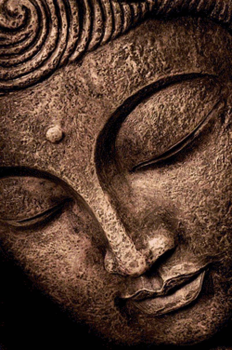 a study of the heart of the buddha or zen The meditation practice of zen, called zazen in japanese, is the heart of zen daily zazen is the foundation of zen practice daily zazen is the foundation of zen practice you can learn the basics of zazen from books, websites, and videos.